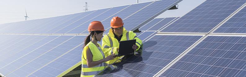 Growing Talent in Clean Energy