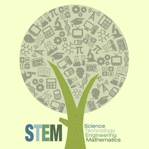 STEM April, 13, 2011