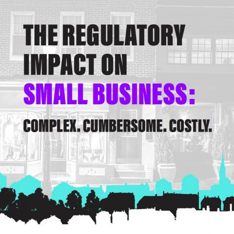 Small Biz Regulatory Study