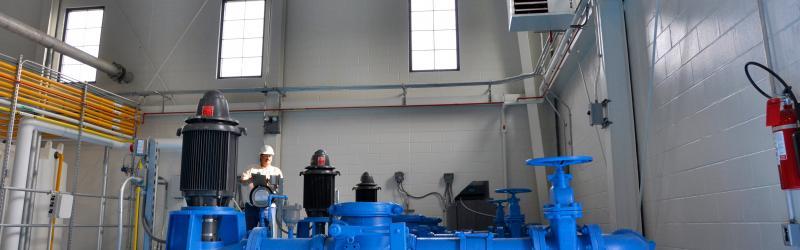 Blue Pumps