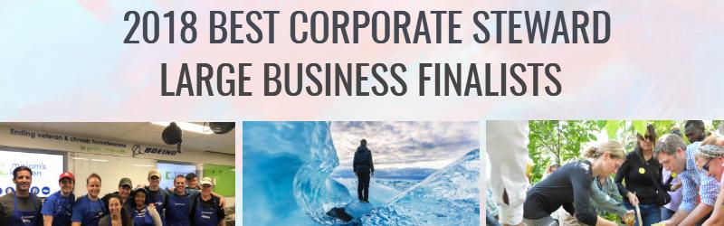 Large Business Citizens Finalists